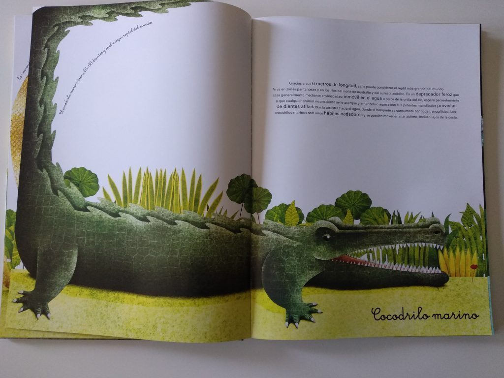 El gran libro de los animales gigantes y el pequeño libro de los animales más pequeños 13