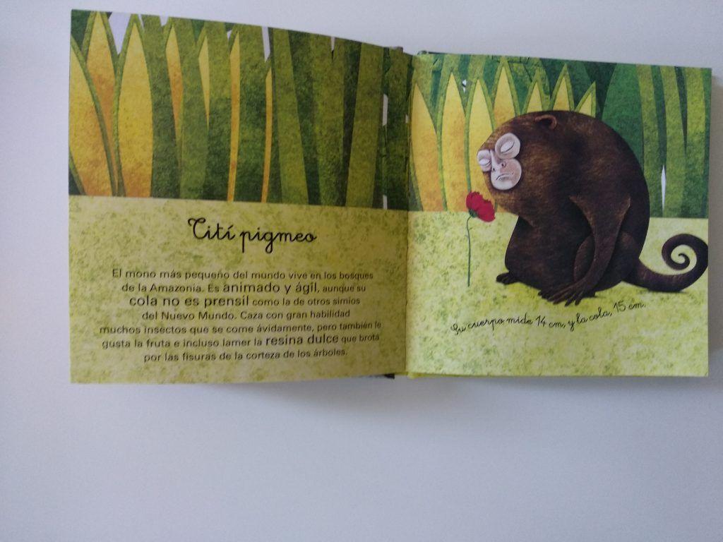 El gran libro de los animales gigantes y el pequeño libro de los animales más pequeños 15