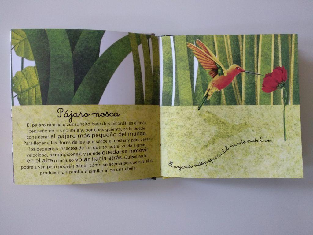 El gran libro de los animales gigantes y el pequeño libro de los animales más pequeños 14