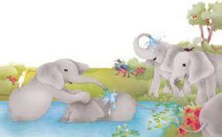 elefantes grises rosa caramelo