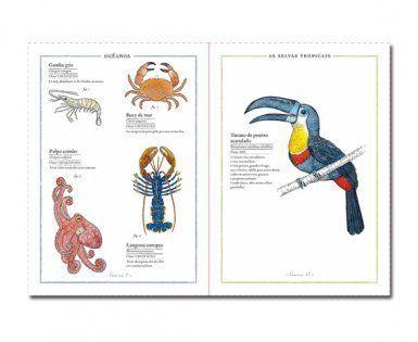 Libros divulgativos para niños de 6 a 8 años