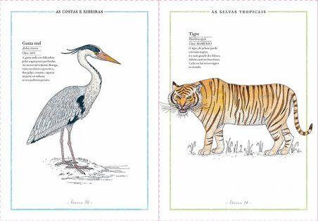 Libro informativo para niños de 6 a 8 años